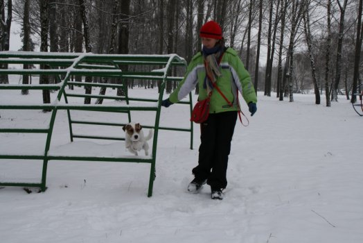 agility sa dá trénovať aj v parku cez preliezku