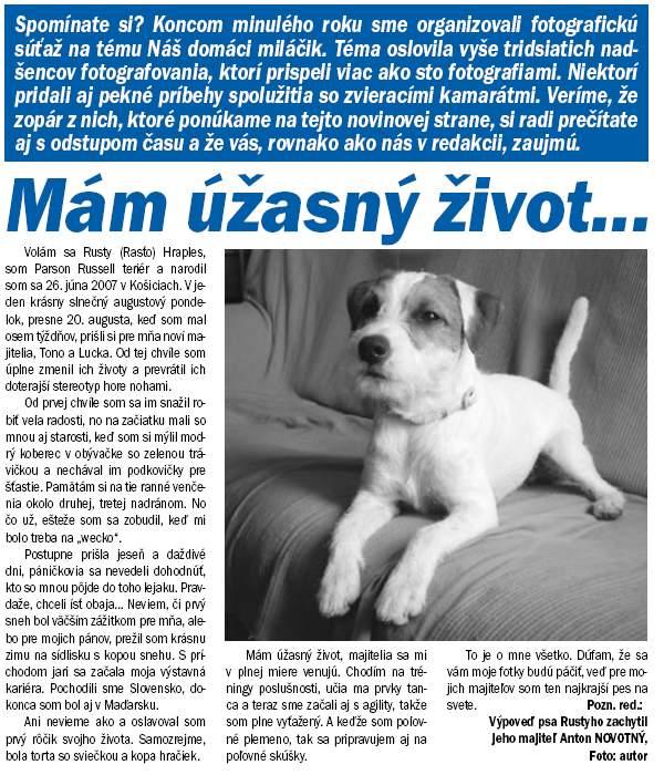 Článok